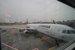 Frankfurter Flughafen - 10