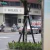 Taipei  - 09