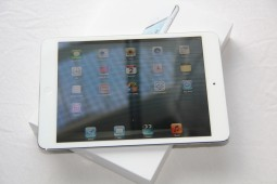 Apple iPad mini - 10