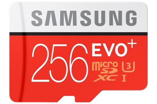 Samsung 256GB microSD Karte - 1