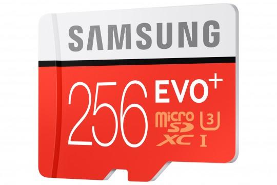 Samsung 256GB microSD Karte - 2