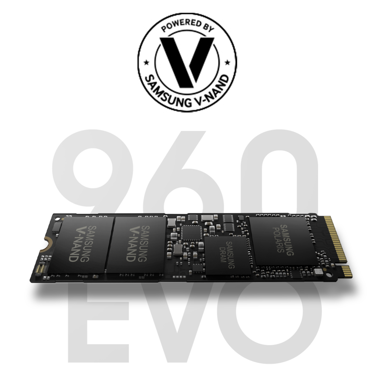 evodie-clevere-wahl-bei-nvme-ssds