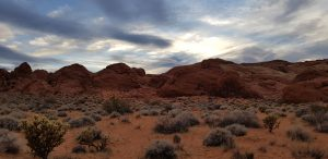 Valley of Fire - 14