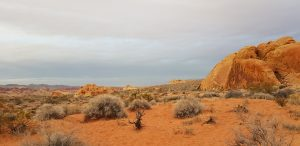 Valley of Fire - 16